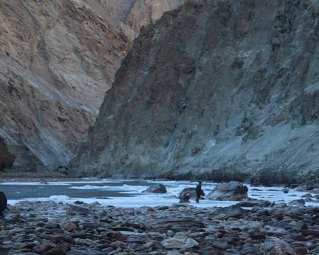 Chadar Trek Blogs