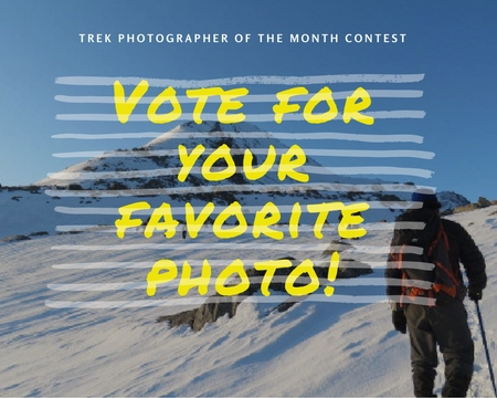 Vote For Your Favorite Photo