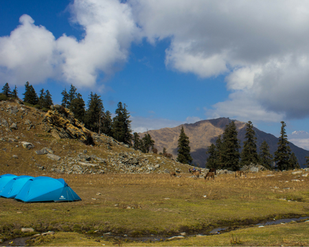 4 days, 4 Winsome Campsites on Kuari Pass-Pangarchula Trek