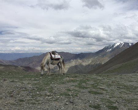 Epitome of Remoteness: Markha Valley Trek