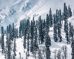 Kashmir Great Lakes Winter Trek