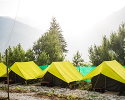 Camp Apple Pie - Manali