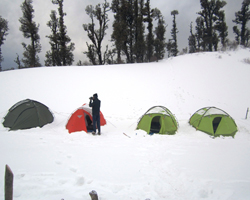 Milam Glacier & Nanda Devi Base Camp Trek