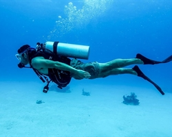 Open Water - Scuba Diving Course