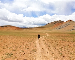 Rumtse to Tso Moriri Lake Trek